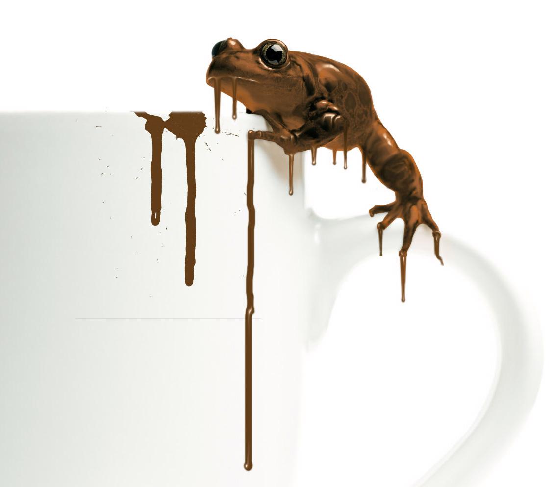 After-chocolade kikker